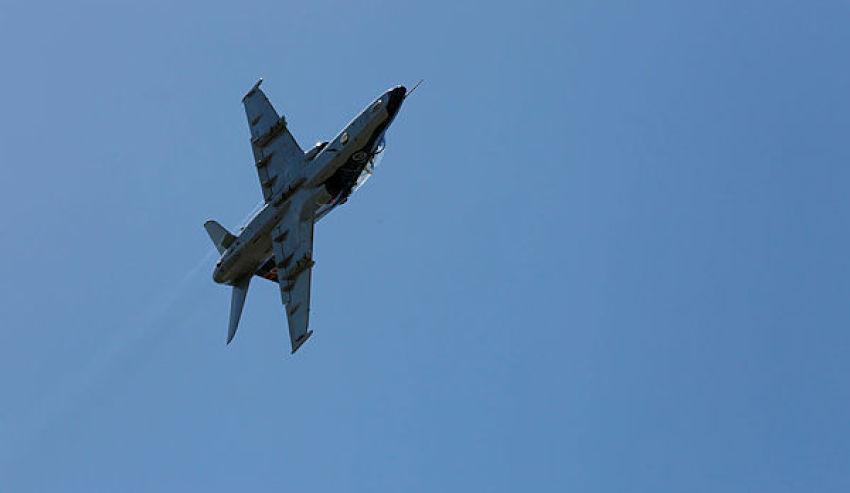 Hawk-127.jpg