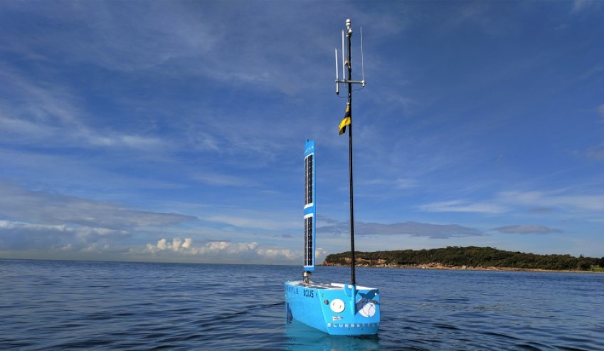 USV-Bluebottle.jpg